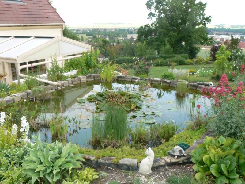 le bassin de rama45 P1020240
