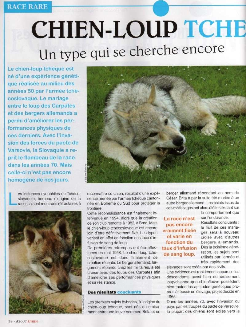Article dans Atout chien Img01110