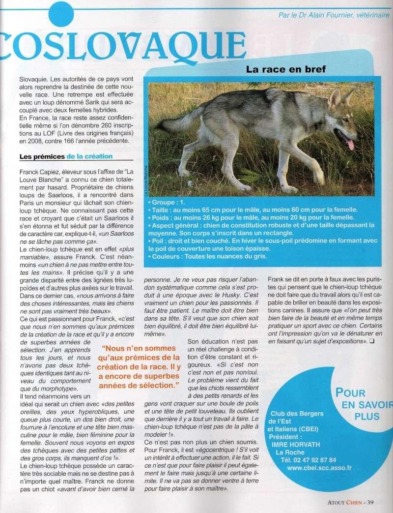 Article dans Atout chien Img01210