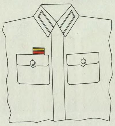 Les insignes de blessé de l'Armée soviétique Illust10