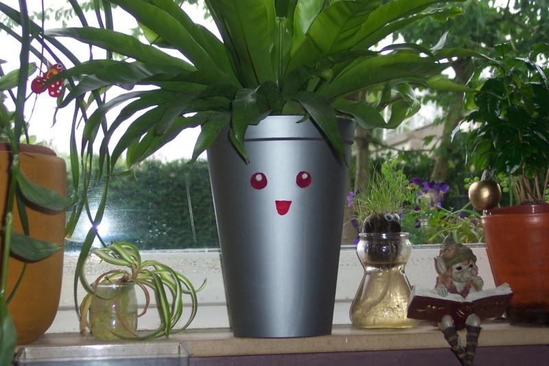 Décorez vos plantes d'intérieur ! Photo_37
