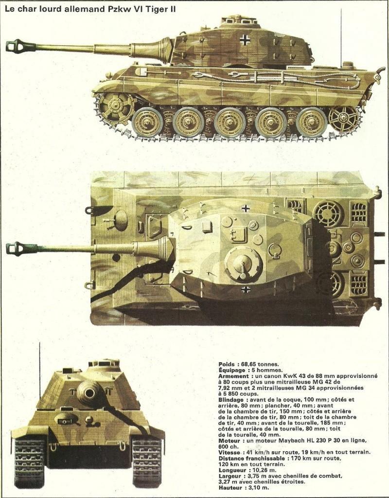 Chars de combat des deux-guerres mondiales Algeri43