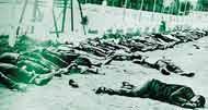 Génocide de 8 mai 1945 Arton410