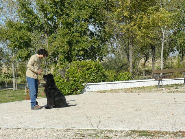 ENTRENAMIENTO 06/11/2010 - Página 2 02_obe10