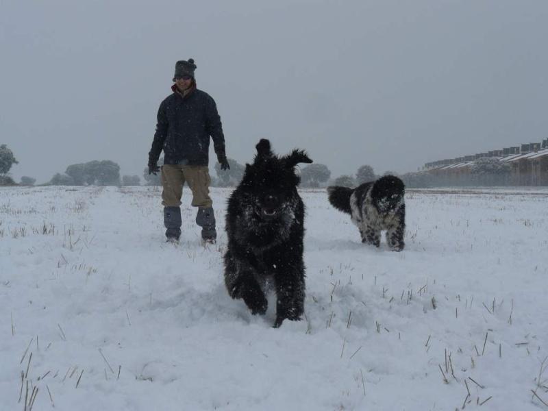 ¡¡INICIAMOS TEMPORADA 2009 DE ENTRENAMIENTOS!! Nieve012