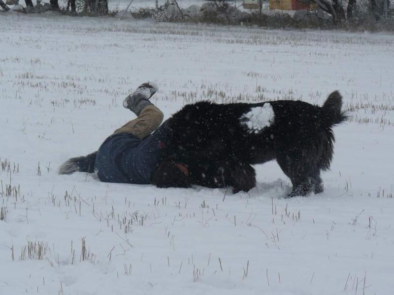¡¡INICIAMOS TEMPORADA 2009 DE ENTRENAMIENTOS!! Nieve013