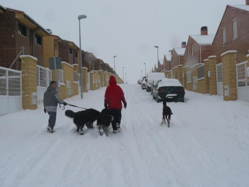 ¡¡INICIAMOS TEMPORADA 2009 DE ENTRENAMIENTOS!! Nieve016