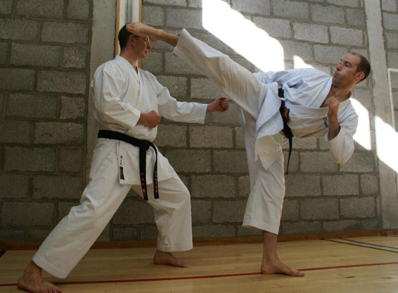 Sports de combat: pour ou contre Alansi10