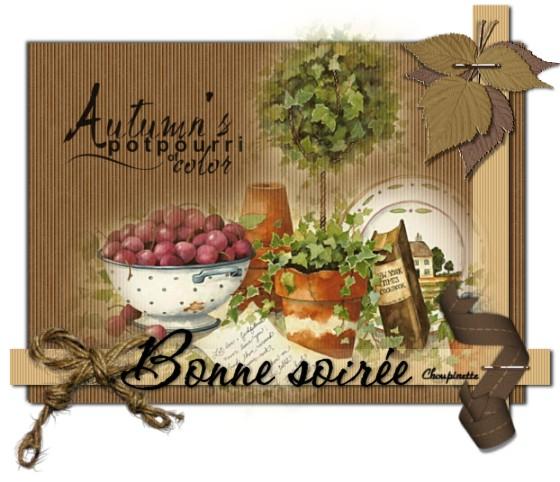 Bonjour, bonsoir d'Octobre 0387_p10