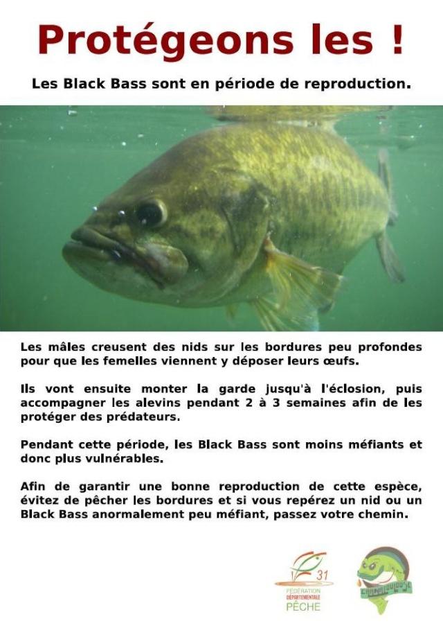 lac lamartine Affich11