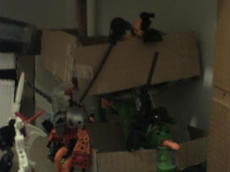 [Produits] Votre collection Bionicle - Page 2 Pict0010