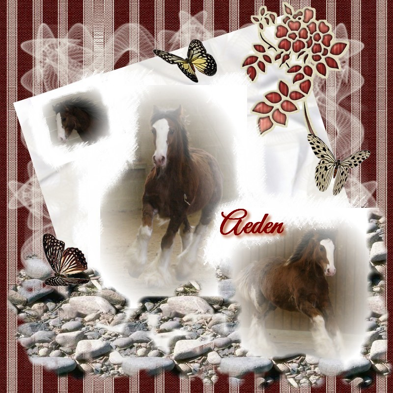 Digiscrap ou scrapbooking digital Aeden_10