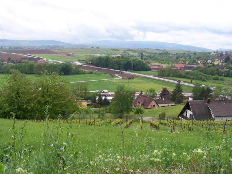 Sur le Marlenberg ....... 100_5527
