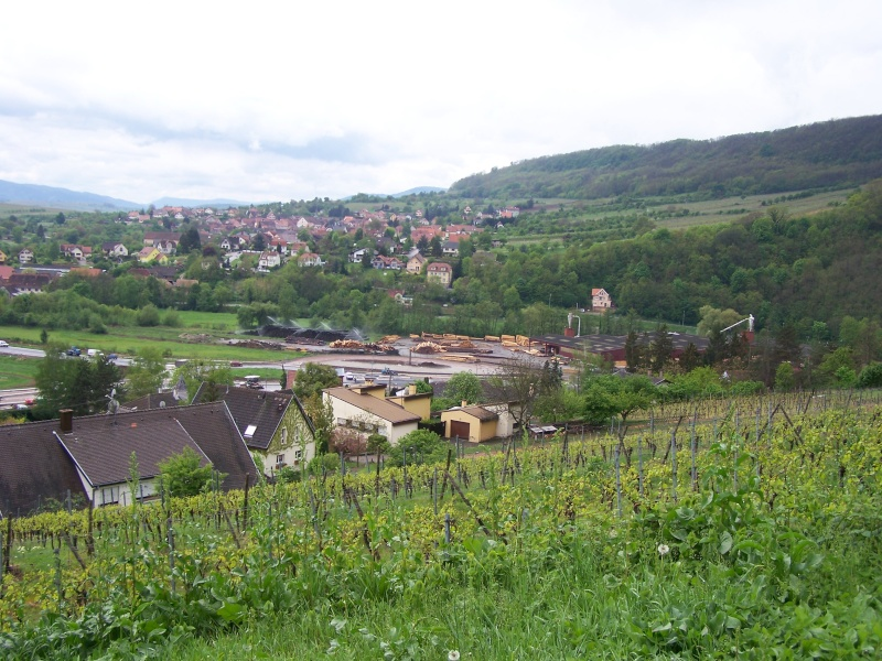Sur le Marlenberg ....... 100_5529