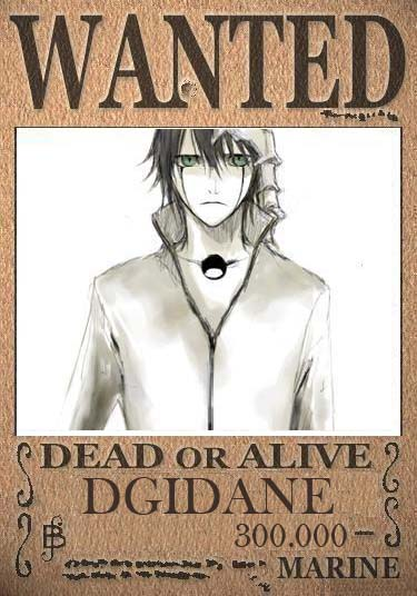 One Piece Times N°1!! Wanted11