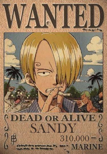One Piece Times N°1!! Wanted12