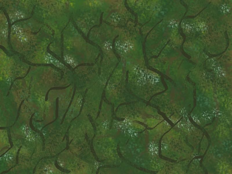 Developpement camouflage Comyac10