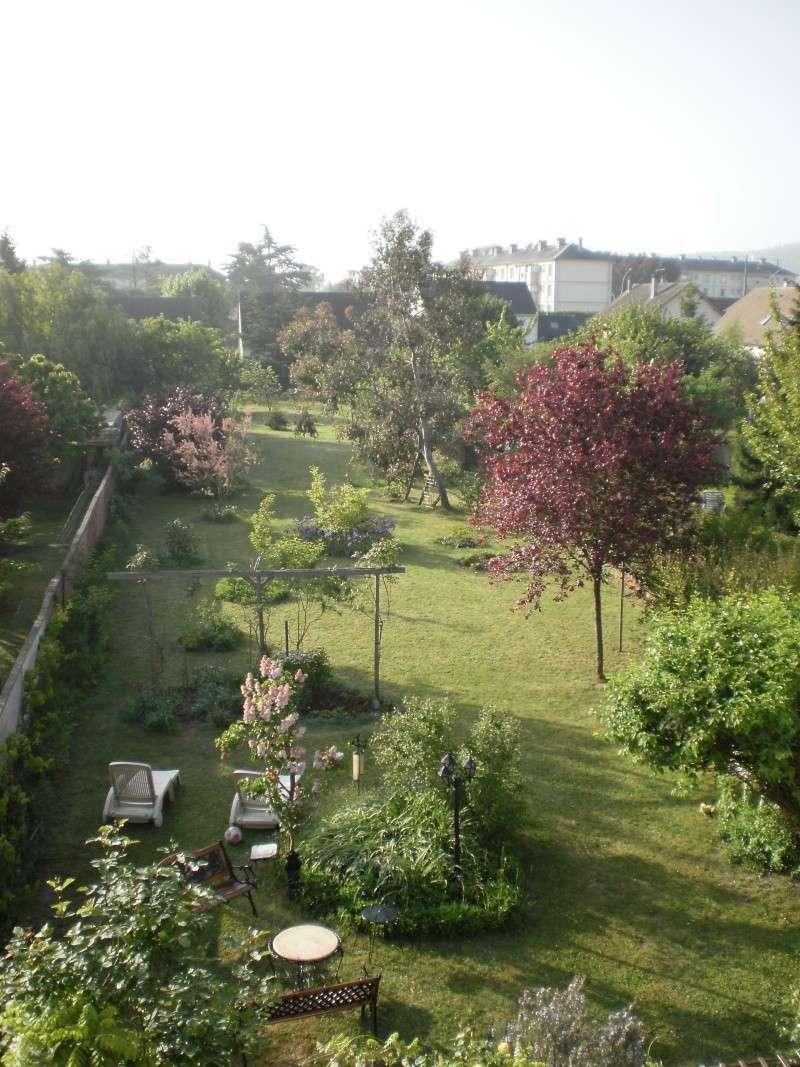 Faire son jardin potager 2010 - 2011 - Page 3 P5050010
