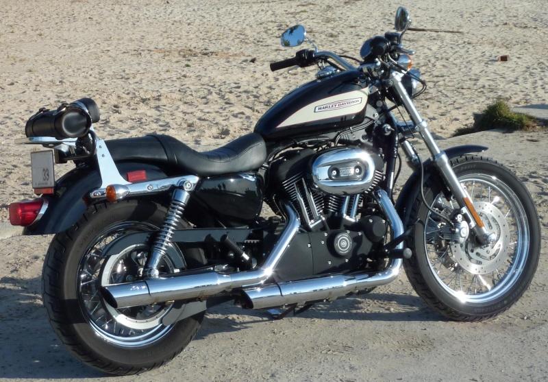 combien sommes nous en 1200 Sportster sur Passion-Harley P1000148