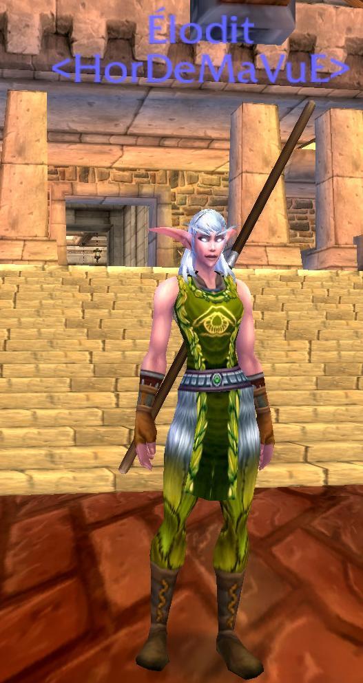Screens - de la guilde HorDeMaVuE en 2009 ! Alodit10