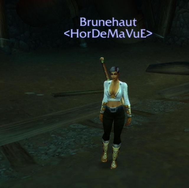 Screens - de la guilde HorDeMaVuE en 2009 ! - Page 2 Bruneh10