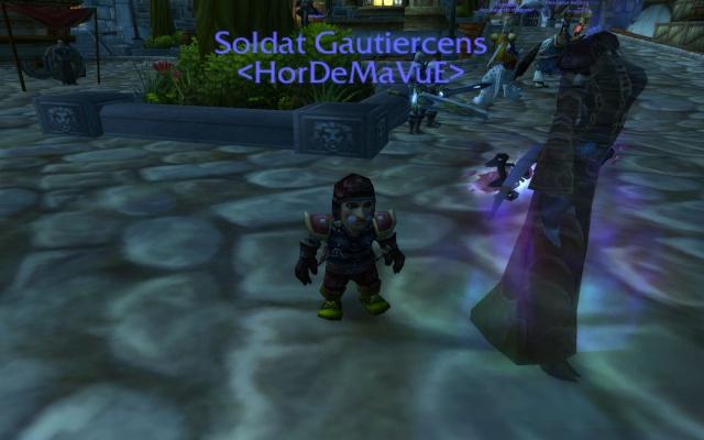 Screens - de la guilde HorDeMaVuE en 2009 ! - Page 3 Gautie10