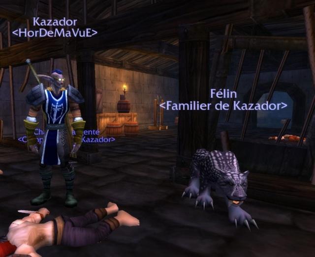 Screens - de la guilde HorDeMaVuE en 2009 ! - Page 2 Kazado10