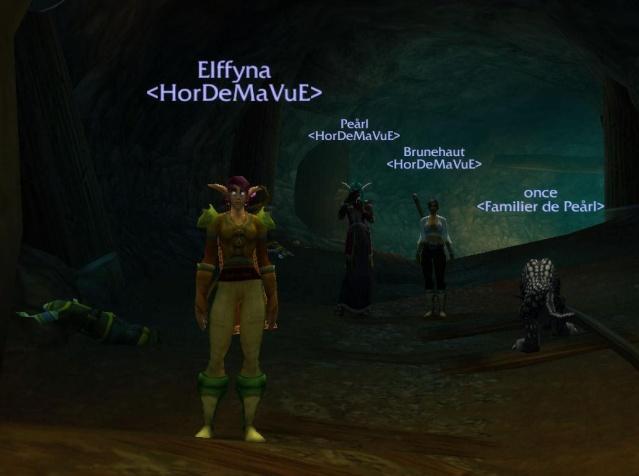 Screens - de la guilde HorDeMaVuE en 2009 ! Membre10