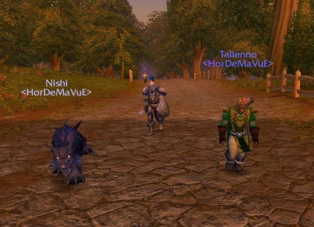 Screens - de la guilde HorDeMaVuE en 2009 ! Nishi_10