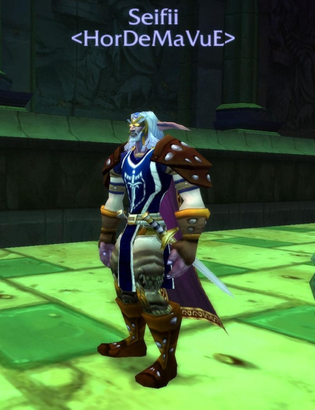 Screens - de la guilde HorDeMaVuE en 2009 ! - Page 2 Seifii10