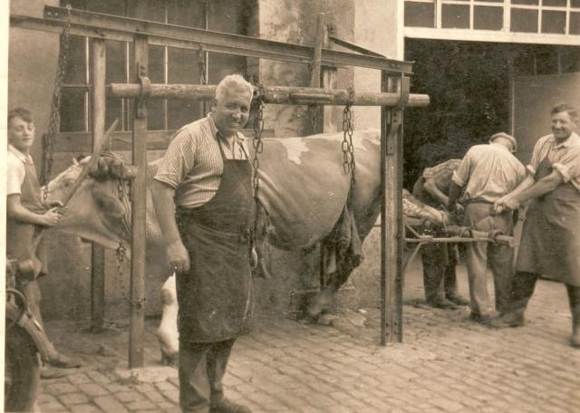 La vie à la campagne autrefois Boeufs13