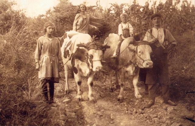 La vie à la campagne autrefois Grandp10