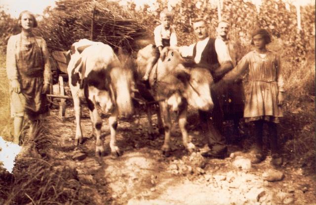 La vie à la campagne autrefois Grandp11