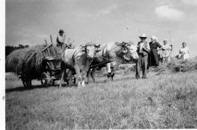 La vie à la campagne autrefois Image110