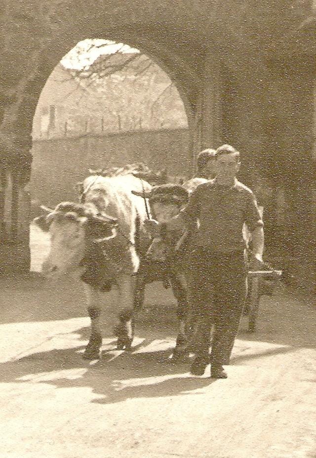 La vie à la campagne autrefois Numari93