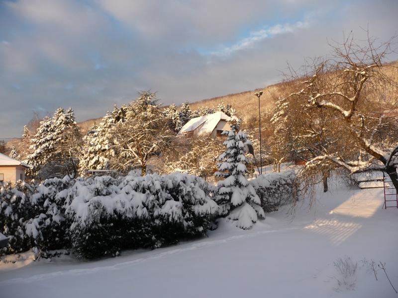 Vive la neige à Wangen ! - Page 3 P1060110