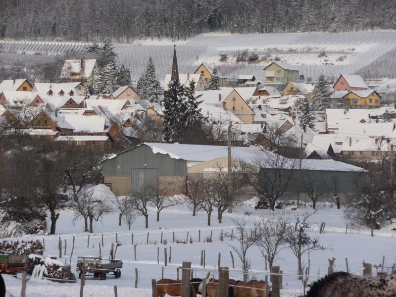 Vive la neige à Wangen ! - Page 3 P1060111