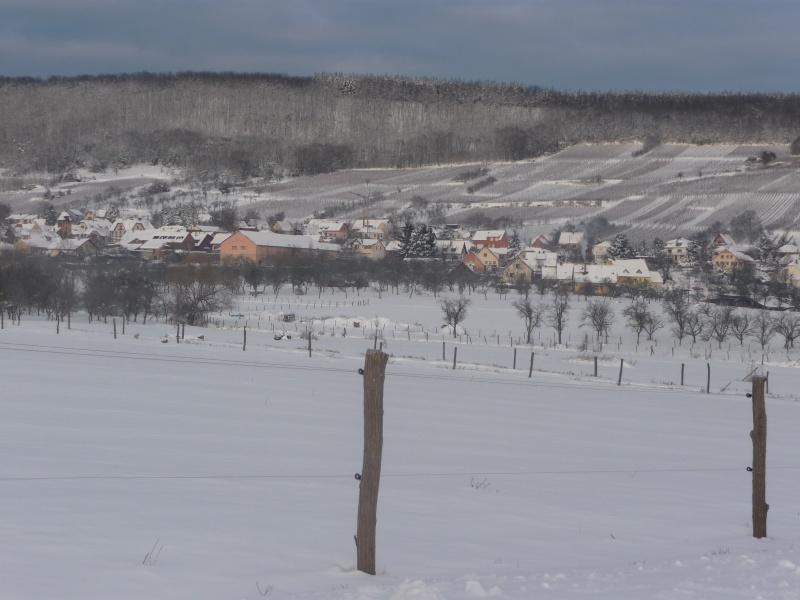 Vive la neige à Wangen ! - Page 3 P1060112