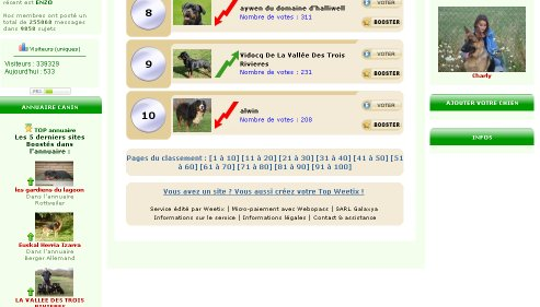 question pour le top chien Image110