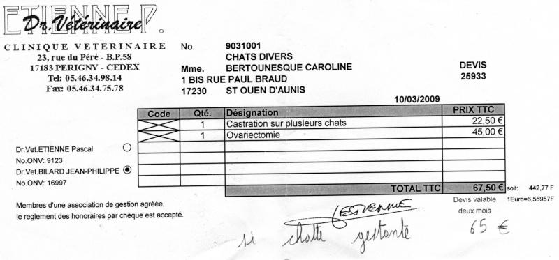 Urgent: besoin dons argents pour stériliser les chats (Aytré 17) Img10211