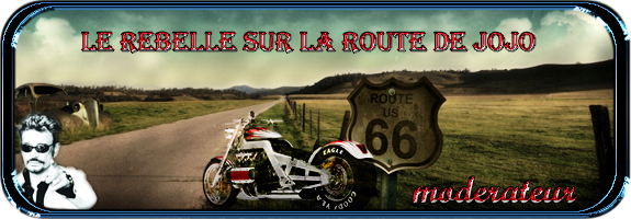 La route 66....version 4 28lgr410