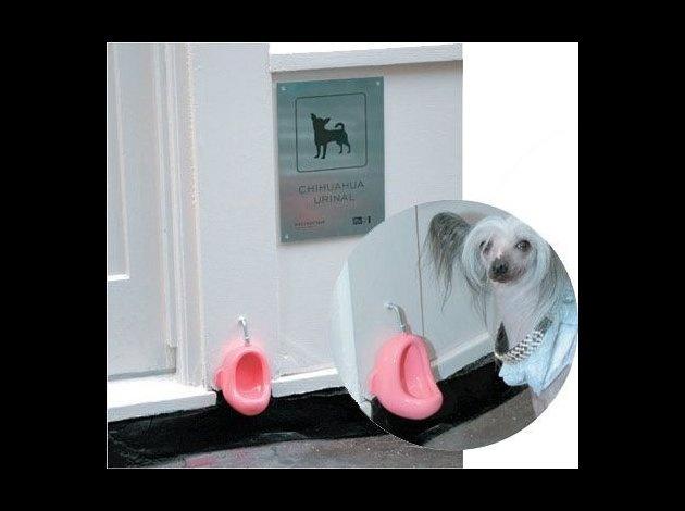 Urinoir pour chiens Untitl12
