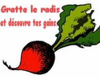 Ticket Légume [Avoir réussi la quéte des légumes] Radis10