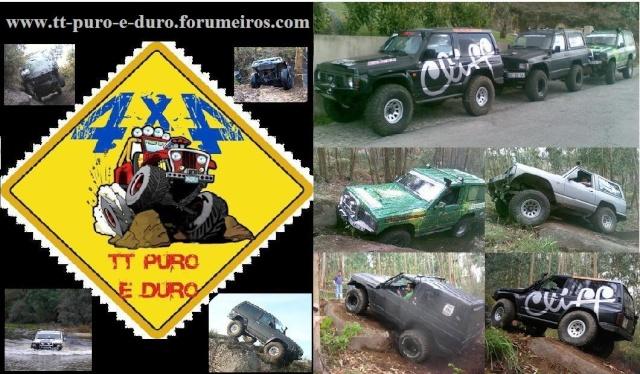 Forum TT Puro e Duro