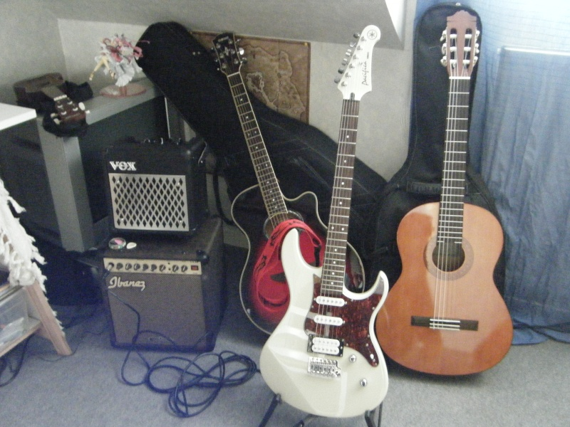 Mes guitares Dscf1310