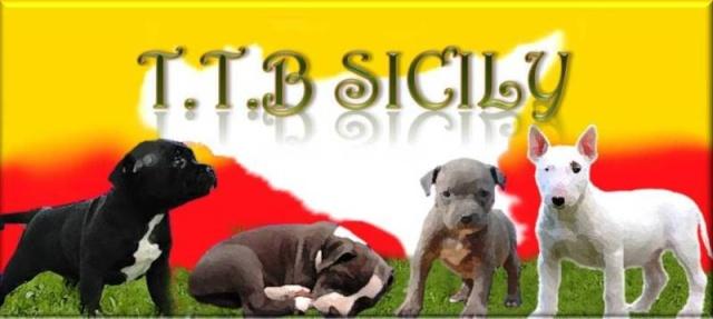 T.T.B. Sicily