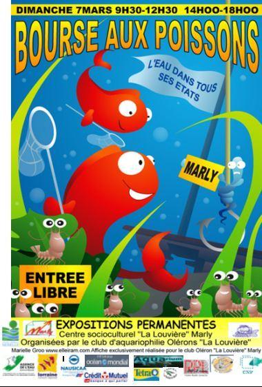 Avis aux Mosellans (et aux autres) : bourse aux poissons à Marly Bourse10