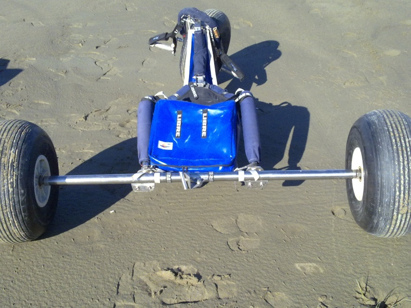 A VENDRE BUGGY Buggy311