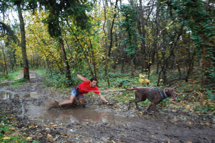 Canicross, courir avec son chien - Page 4 76685_10