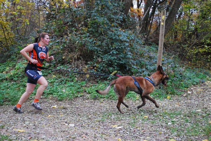 Canicross, courir avec son chien - Page 3 Cani_c15